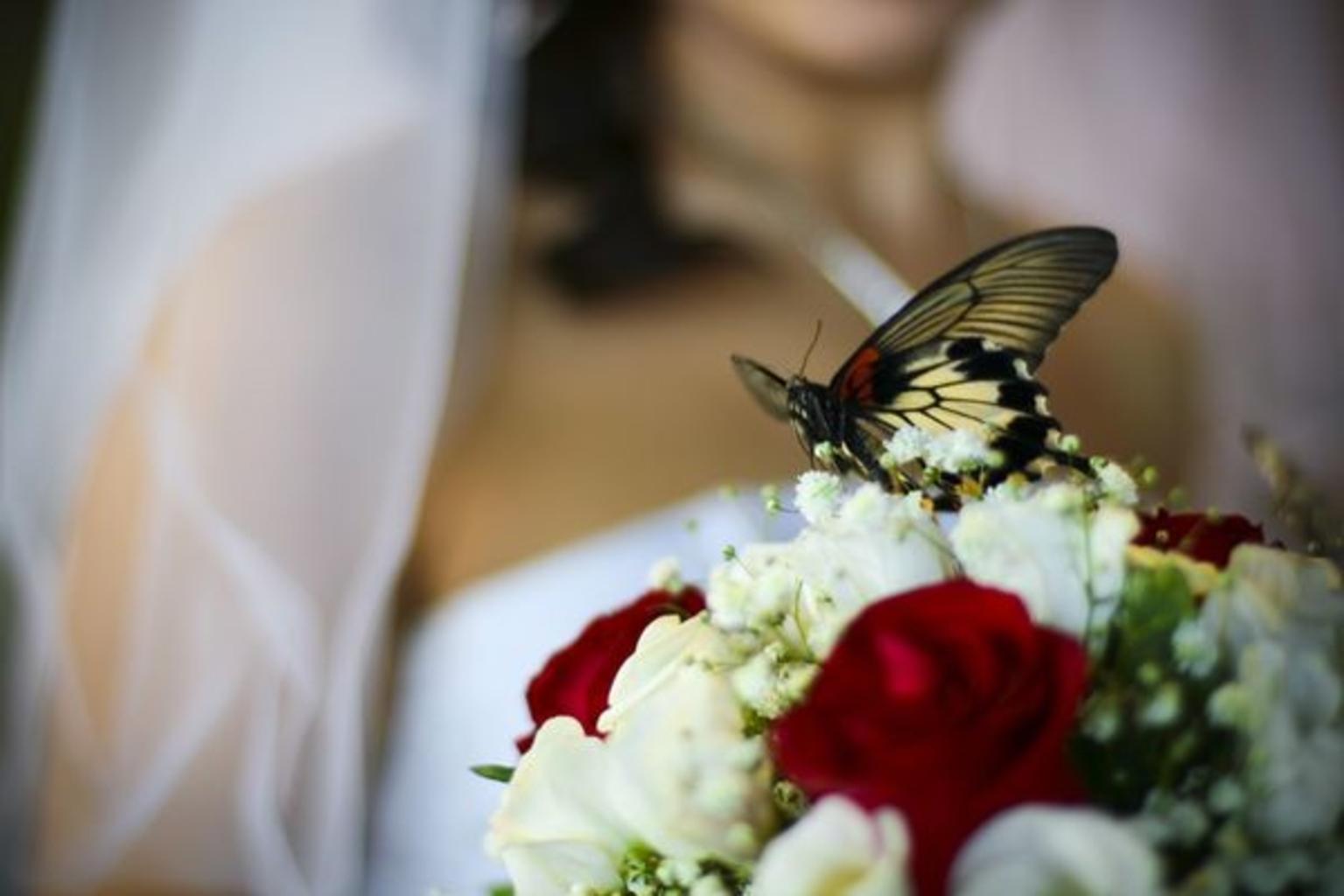 Подарки на свадьбу 81
