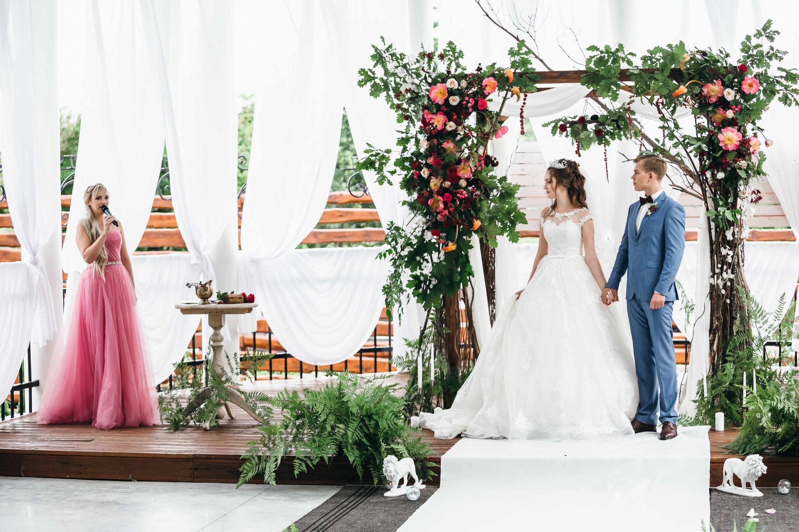 Каталог офисных цветов фото
