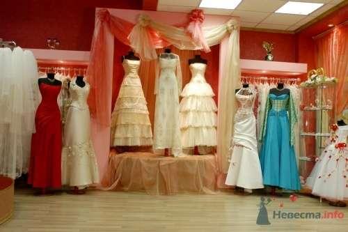 Фото 5381 в коллекции Наш салон - Невеста01