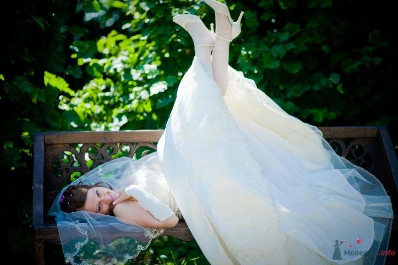 Фото 58381 в коллекции Свадьба - Наталья и Сергей