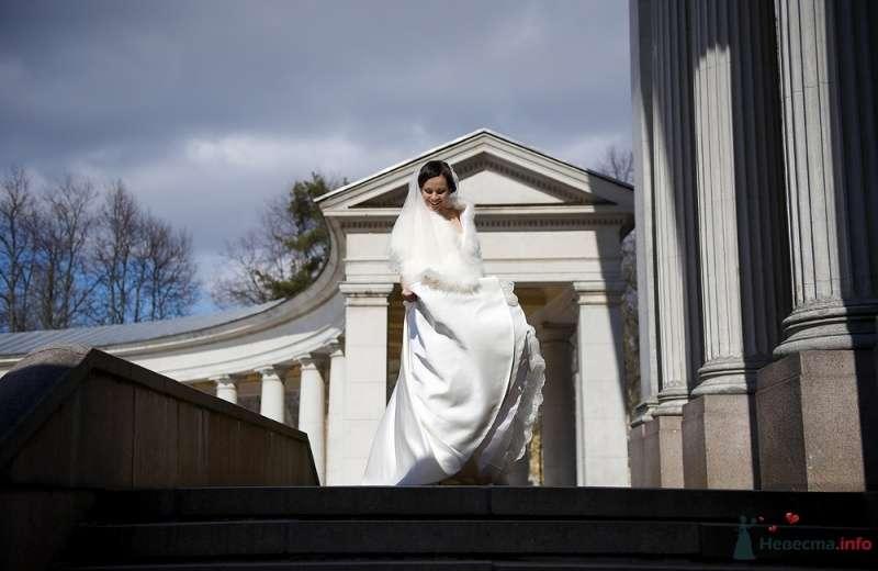 """Фото 27024 в коллекции Свадьба - Свадебное агентство """"Велес"""""""