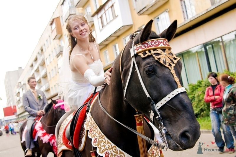 Надите на этой фотографии невесту