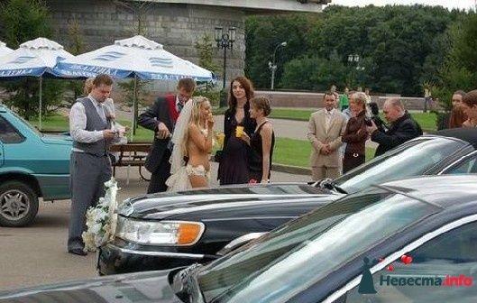 Фото 84149 в коллекции Подготовка к свадьбе