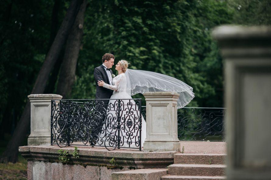Фото 19887485 в коллекции Свадьбы - Фотограф Александр Слонимский
