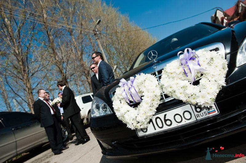 Черное свадебное авто украшенное большими сердцами из белых цветов с сиреневыми лентами. - фото 116402 kri