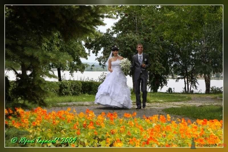 Фото 64115 в коллекции Свадьбы - Cвадебный фотограф Юрий Тарасов