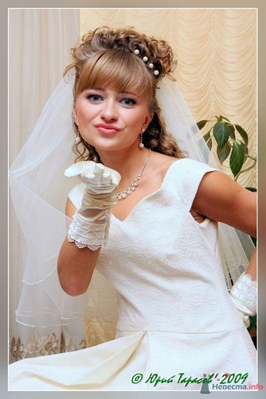 Фото 64122 в коллекции Свадьбы