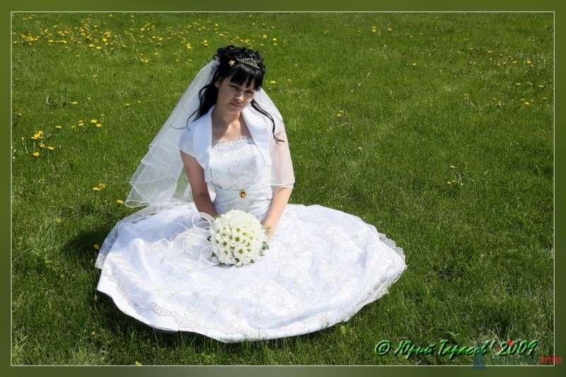Фото 64138 в коллекции Свадьбы - Cвадебный фотограф Юрий Тарасов