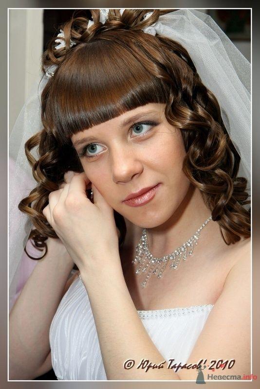 Фото 80177 в коллекции Свадьбы