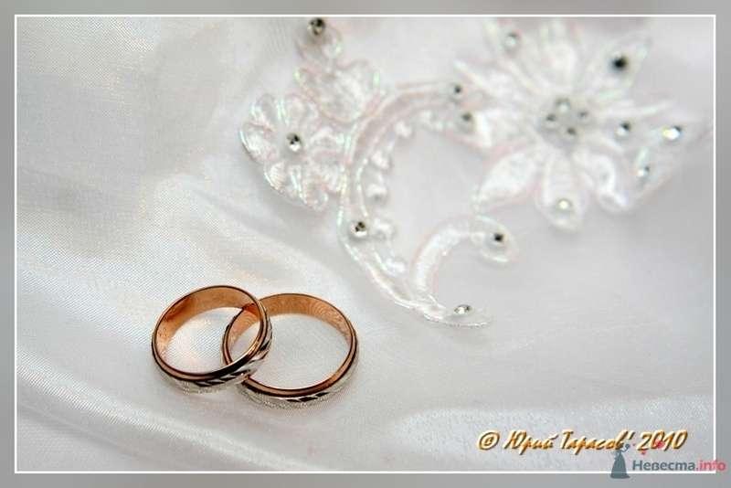 Фото 80181 в коллекции Свадьбы - Cвадебный фотограф Юрий Тарасов