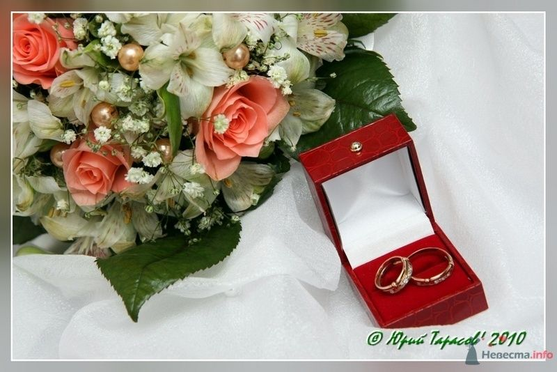 Фото 80202 в коллекции Свадьбы - Cвадебный фотограф Юрий Тарасов