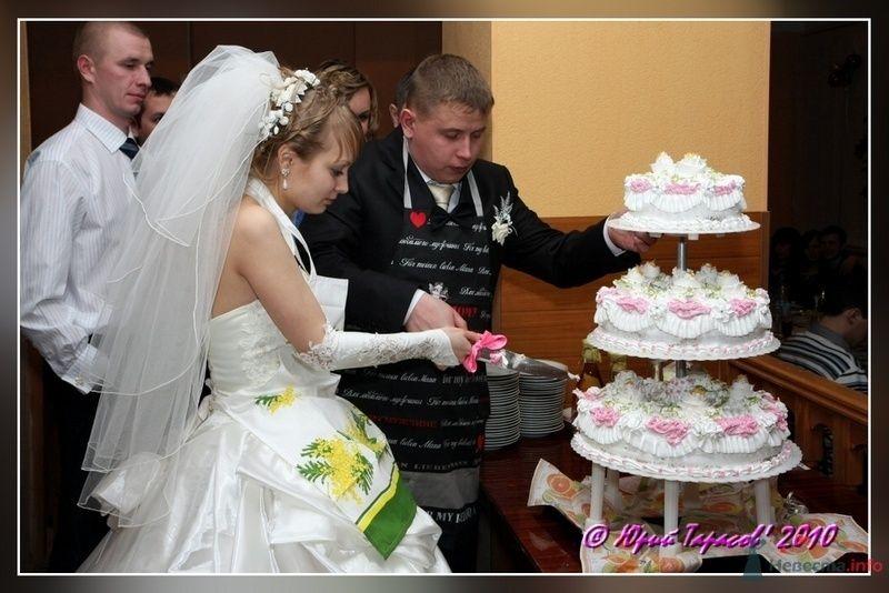 Фото 80247 в коллекции Свадьбы - Cвадебный фотограф Юрий Тарасов