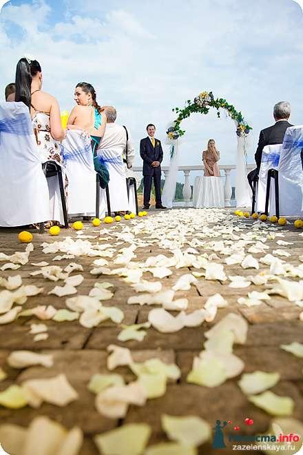 Фото 108565 в коллекции My lemon&camomile wedding - Shuga