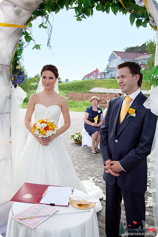 Фото 108569 в коллекции My lemon&camomile wedding - Shuga