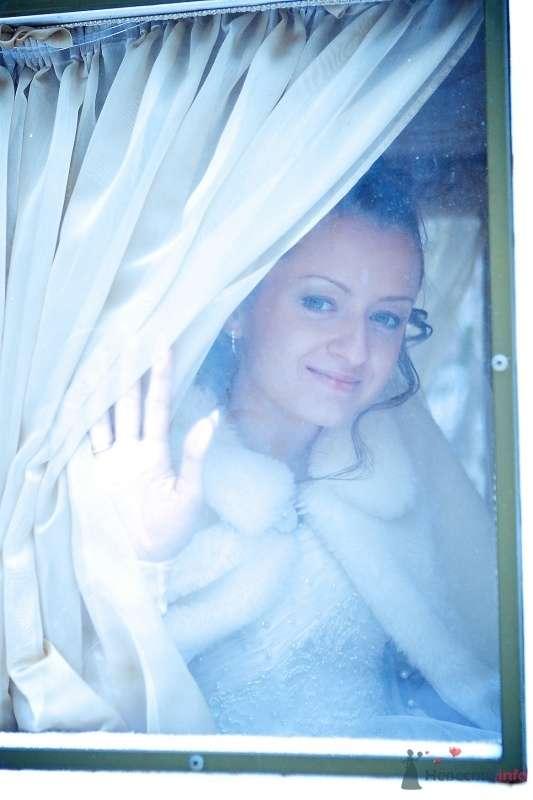 """Свадьба Алексея и Натальи - фото 66025 Студия """"MAGIQUE"""""""