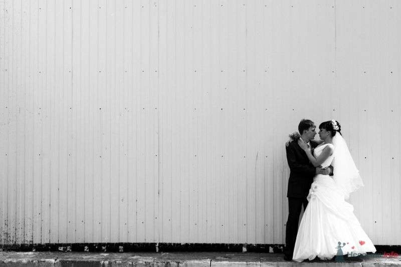 """Свадьба Гены и Анастасии - фото 66030 Студия """"MAGIQUE"""""""