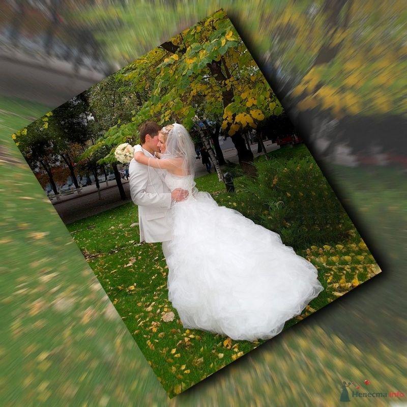 Книга - фото 65877 Фотограф Леонид Шафтан