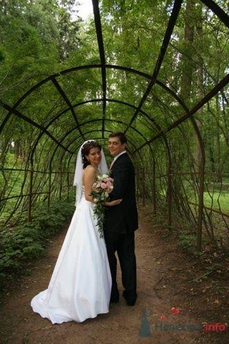 Фото 3574 в коллекции Свадебные фотографии - Фотограф Александр Черноусов
