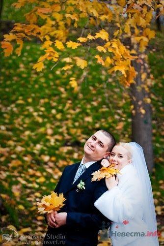 Фото 4912 в коллекции Свадебное фото - Фотограф Радосвет Лапин