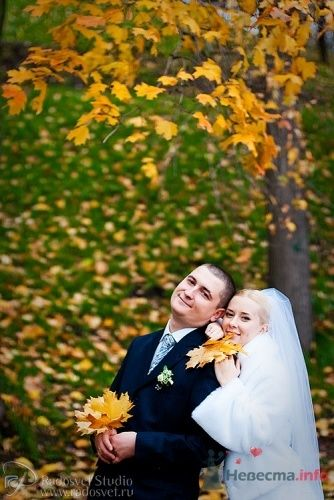 Фото 4912 в коллекции Свадебное фото
