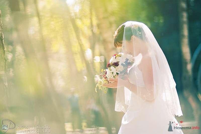 Фото 39898 в коллекции Свадебное фото - Фотограф Радосвет Лапин