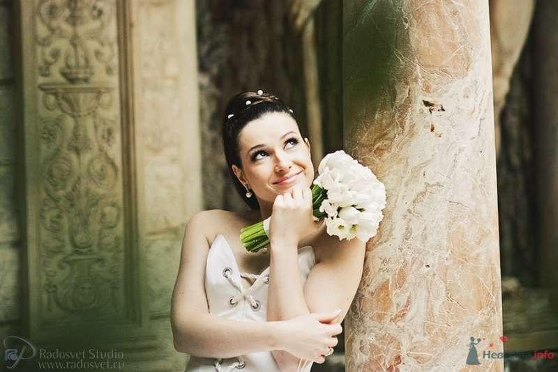 Фото 44968 в коллекции Свадебное фото - Фотограф Радосвет Лапин