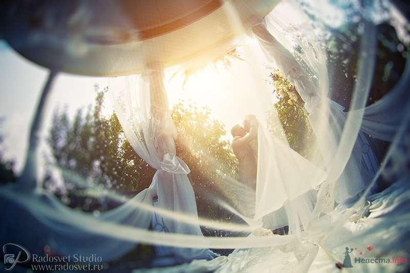 Фото 47625 в коллекции Свадебное фото - Фотограф Радосвет Лапин