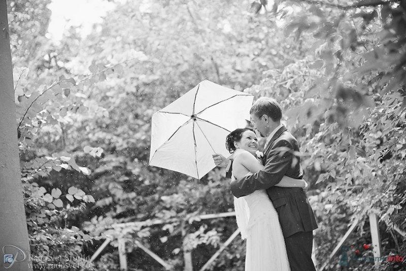 Фото 54311 в коллекции Свадебное фото - Фотограф Радосвет Лапин