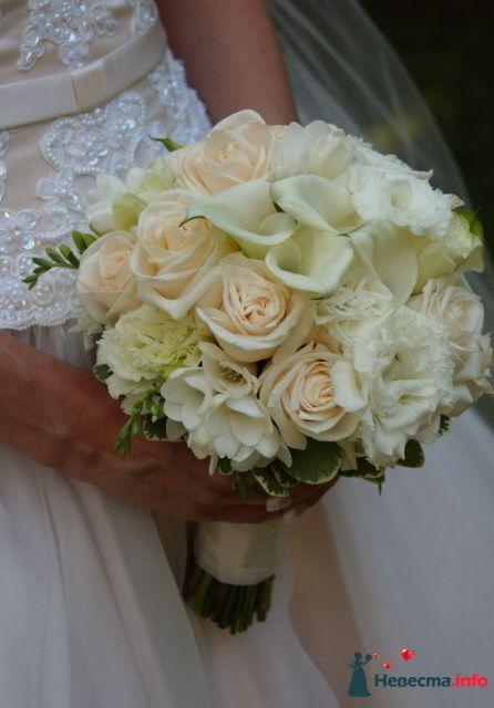 Фото 90136 в коллекции Букет невесты, подружек, и бутоньерка жениха!