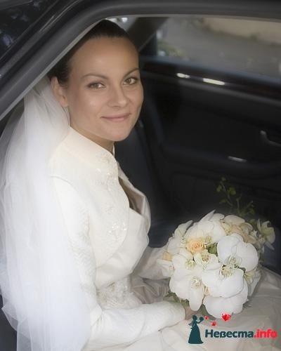 Фото 90146 в коллекции Букет невесты, подружек, и бутоньерка жениха!