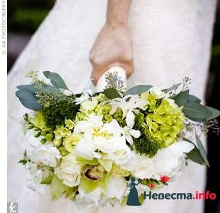 Фото 103269 в коллекции Зеленая свадьба - Невеста Настенька