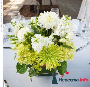 Фото 103281 в коллекции Зеленая свадьба - Невеста Настенька