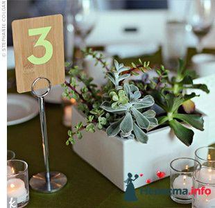 Фото 103282 в коллекции Зеленая свадьба - Невеста Настенька