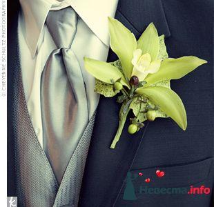 Фото 103297 в коллекции Зеленая свадьба - Невеста Настенька