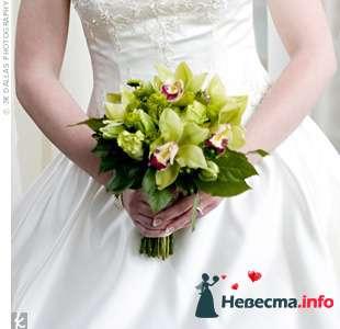 Фото 103306 в коллекции Зеленая свадьба - Невеста Настенька