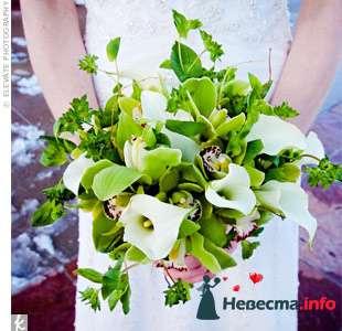 Фото 103314 в коллекции Зеленая свадьба - Невеста Настенька