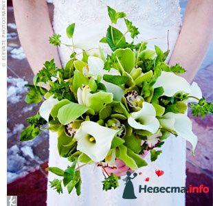 Фото 103314 в коллекции Зеленая свадьба