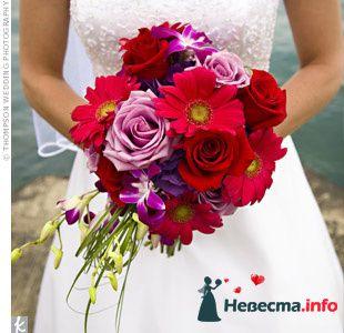 Фото 103353 в коллекции Красная свадьба! - Невеста Настенька