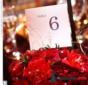 Фото 103368 в коллекции Красная свадьба! - Невеста Настенька