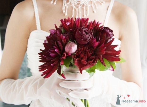 Букет невесты из бордовых астр и роз  - фото 68151 Yatsan