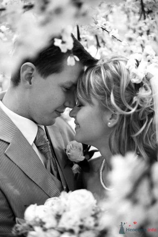 Фото 65825 в коллекции Свадебная подборка - Авторская видеография Сергея Дорохина(Dvcamstudio)