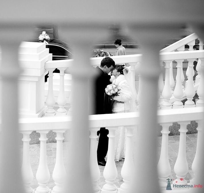 Жених и невеста стоят, прислонившись друг к другу, на фоне белого - фото 66046 respekt
