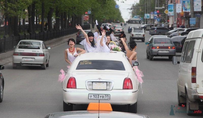 Фото 68984 в коллекции Свадебный Flashmob 1.  - Организатор торжеств Антон Уткин