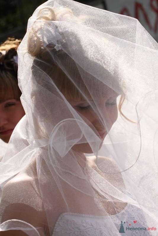 Фото 68985 в коллекции Свадебный Flashmob 1.  - Организатор торжеств Антон Уткин