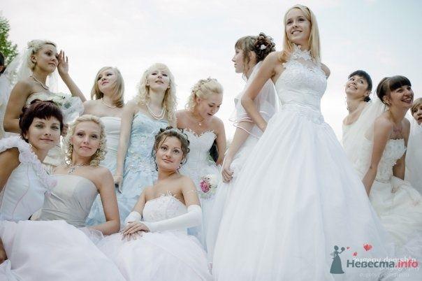 """Фото 69025 в коллекции Свадебный Flashmob 2 """"гламур и брутальность"""""""