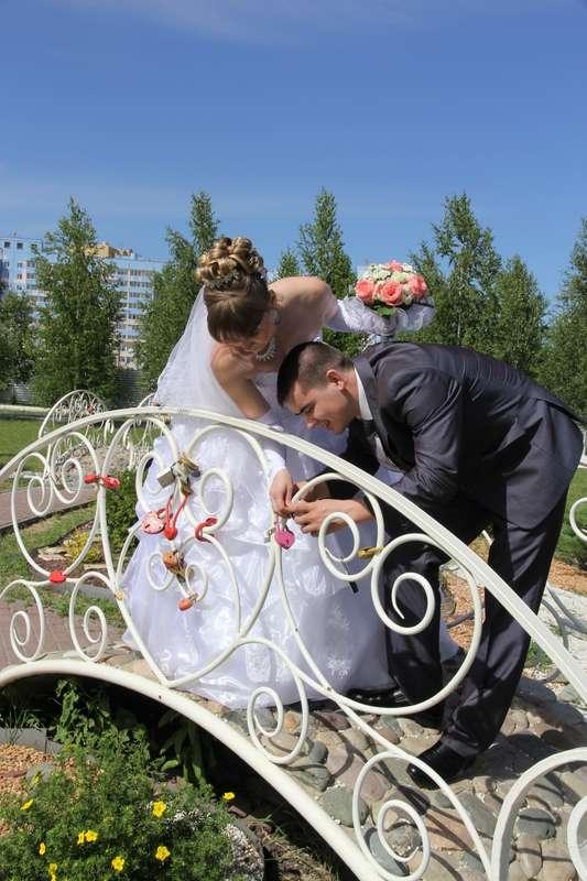Фото 1011007 в коллекции Владимир и Юля. - Фотограф Сергей Семенов