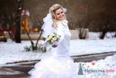 Фото 70266 в коллекции Свадебная фотография - Фотограф Анастасия Яценко