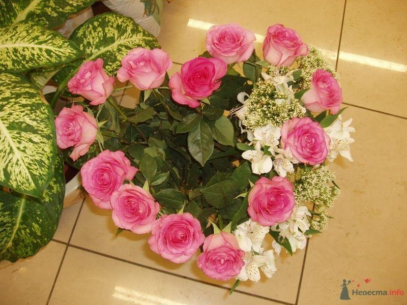 5 - фото 67286 Ксения977
