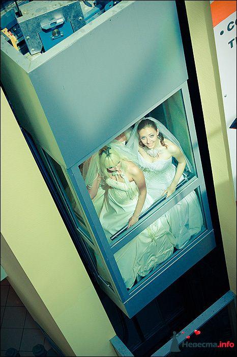 Фото 107767 в коллекции Первая выставка Свадебной фотографии в Перми - Фотограф Швецов Николай