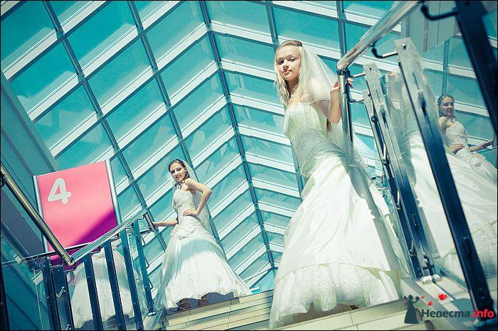 Фото 107790 в коллекции Первая выставка Свадебной фотографии в Перми - Фотограф Швецов Николай